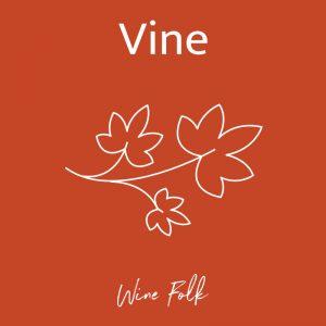 Wine Folk Vine